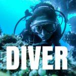 WordPress Diverの評判の真相は?使い続けて実感した感想とレビュー