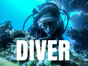 【Diverレビュー】特典つき!初心者が使っても優しいWordPressテーマ