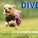 Diverなら超簡単!ページのトップに戻るボタンの設定方法